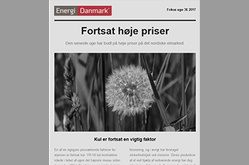 Focus newsletter - Energi Danmark Group